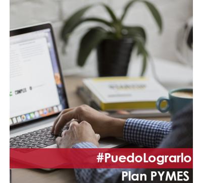 Plan pymes - arma una tienda profesional sin contratar programadores - 13 meses de servicio